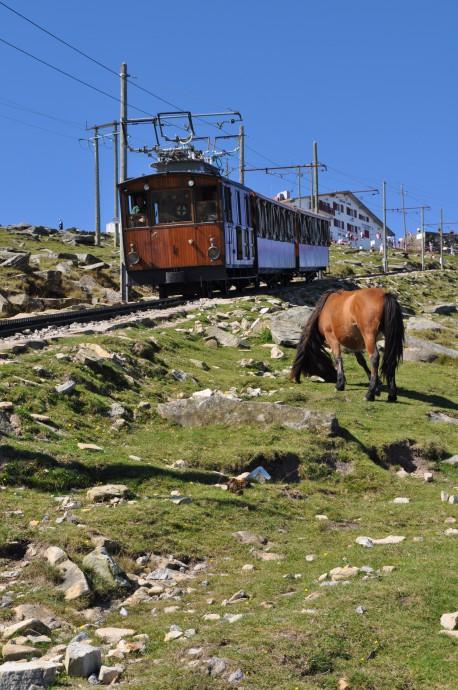 Train La RhuneFotolia