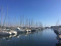 ST CYPRIEN 3ième port d'Europe - LE PERTHUS