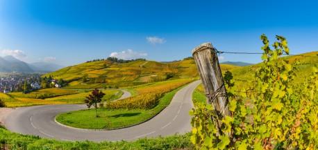 Alsace pays des saveursFotolia
